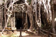 B_2_Cambogia_Angkor What (63a)
