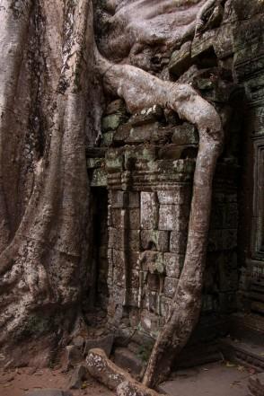 B_2_Cambogia_Angkor What (63b)