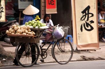 H_12_11_Vietnam_Hanoi (38)